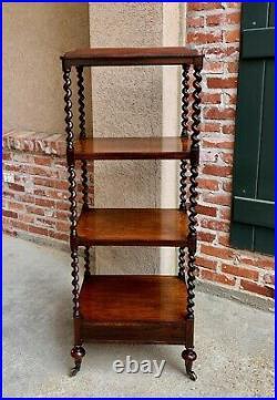 Antique English Mahogany Display Shelf Barley Twist Étagère Bookcase 19th c