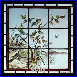 Rare Beautiful Victorian Painted Lakeland Birds English Stained Glass Window