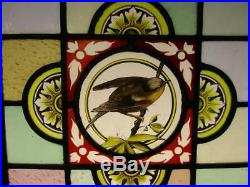 VICTORIAN ENGLISH LEADED STAINED GLASS WINDOW Hand Painted Bird 19.75 x 21.25
